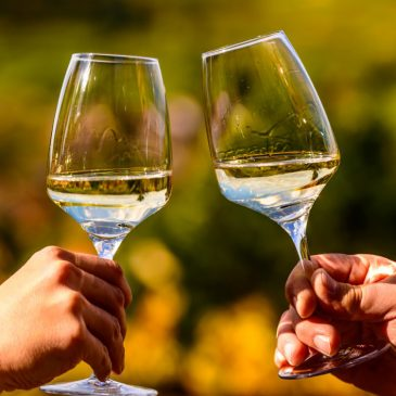 Coffret dégustation vin blanc – 6 bouteilles
